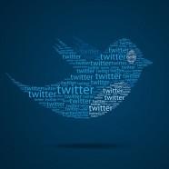 Twitter es el medio. No es el fin.